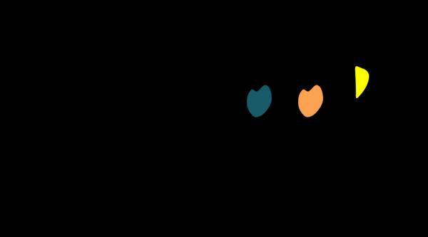 Logo Vracoop